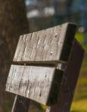 Κινηματογράφηση σε πρώτο πλάνο πάγκων στο πάρκο Στοκ εικόνα με δικαίωμα ελεύθερης χρήσης