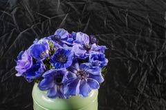 Κινηματογράφηση σε πρώτο πλάνο παπαρουνών μιας των μπλε και πορφυρών κλίσης anemones στο βάζο Πολλά λουλούδια - μαύρο υπόβαθρο χε Στοκ φωτογραφία με δικαίωμα ελεύθερης χρήσης
