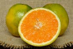 Κινηματογράφηση σε πρώτο πλάνο πορτοκαλιών Στοκ Εικόνες