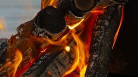 Κινηματογράφηση σε πρώτο πλάνο πυρκαγιάς, καίγοντας καυσόξυλο Στοκ Εικόνες