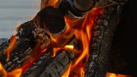 Κινηματογράφηση σε πρώτο πλάνο πυρκαγιάς, καίγοντας καυσόξυλο Στοκ εικόνα με δικαίωμα ελεύθερης χρήσης