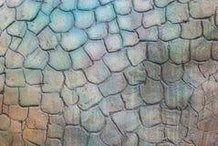 Κινηματογράφηση σε πρώτο πλάνο στην παλαιά σύσταση υποβάθρου κυττάρων συγκεκριμένη Στοκ Εικόνα