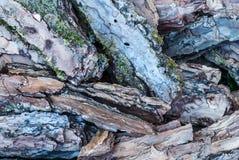 Κινηματογράφηση σε πρώτο πλάνο στο σωρό της ξύλινης σύστασης υποβάθρου κούτσουρων Στοκ Φωτογραφία