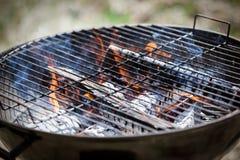 Κινηματογράφηση σε πρώτο πλάνο σχαρών πυρκαγιάς σχαρών Νέα και παλαιά αυξημένη χλόη στο υπόβαθρο Στοκ Φωτογραφίες