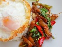 Κινηματογράφηση σε πρώτο πλάνο, ταϊλανδικά τρόφιμα: τηγανισμένος βασιλικός με το τριζάτο αυγό χοιρινού κρέατος Στοκ Εικόνες