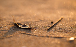Κινηματογράφηση σε πρώτο πλάνο της άμμου παραλιών ηλιοβασιλέματος με το φύλλο και το ξύλινο ραβδί Στοκ Εικόνα