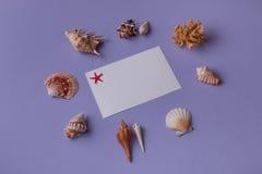 Κινηματογράφηση σε πρώτο πλάνο της κάρτας και των θαλασσινών κοχυλιών δώρων Στοκ εικόνα με δικαίωμα ελεύθερης χρήσης
