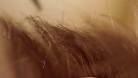 Κινηματογράφηση σε πρώτο πλάνο του κομμωτή που κόβει την ανθρώπινη τρίχα μέσα απόθεμα βίντεο