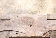 Κινηματογράφηση σε πρώτο πλάνο του πάγκου Στοκ εικόνα με δικαίωμα ελεύθερης χρήσης