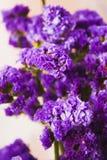 Κινηματογράφηση σε πρώτο πλάνο του πορφυρού λουλουδιού ομάδας Στοκ φωτογραφία με δικαίωμα ελεύθερης χρήσης