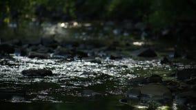 Κινηματογράφηση σε πρώτο πλάνο του ποταμού που ρέει πέρα από τους βράχους φιλμ μικρού μήκους