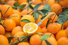 Κινηματογράφηση σε πρώτο πλάνο του τεμαχισμένου πορτοκαλιού σε μια αγορά Στοκ εικόνα με δικαίωμα ελεύθερης χρήσης