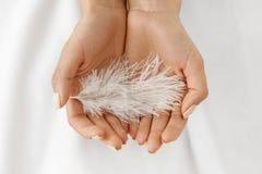 Κινηματογράφηση σε πρώτο πλάνο του όμορφου άσπρου φτερού εκμετάλλευσης χεριών γυναικών Στοκ Φωτογραφίες