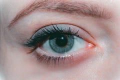 Κινηματογράφηση σε πρώτο πλάνο του όμορφου θηλυκού φυσικού μπλε ματιού χωρίς makeup στοκ εικόνες
