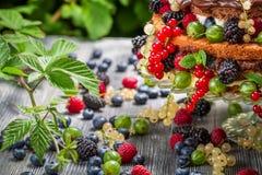 Κινηματογράφηση σε πρώτο πλάνο των άγριων φρέσκων φρούτων μούρων κέικ στο δάσος Στοκ Εικόνες