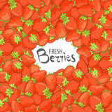Κινηματογράφηση σε πρώτο πλάνο των κόκκινων φραουλών διανυσματική απεικόνιση