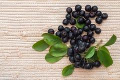 Κινηματογράφηση σε πρώτο πλάνο των μούρων & x28 melanocarpa Aronia μαύρο chokeberry& x29  με τα φύλλα στο κλωστοϋφαντουργικό προϊ Στοκ φωτογραφίες με δικαίωμα ελεύθερης χρήσης
