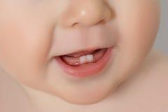 Κινηματογράφηση σε πρώτο πλάνο των δοντιών μωρών στοκ φωτογραφία