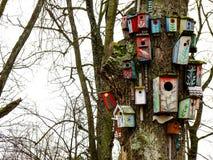 Κινηματογράφηση σε πρώτο πλάνο των τοποθετούμαι-κιβωτίων στο περικομμένο δέντρο Στοκ φωτογραφία με δικαίωμα ελεύθερης χρήσης