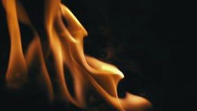 Κινηματογράφηση σε πρώτο πλάνο των φλογών που καίνε στο μαύρο υπόβαθρο απόθεμα βίντεο