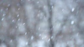 Κινηματογράφηση σε πρώτο πλάνο των χιονοπτώσεων - ατμοσφαιρικών, να συναρπάσει απόθεμα βίντεο