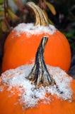 Κινηματογράφηση σε πρώτο πλάνο δύο υπαίθριων κολοκυθών που καλύπτονται snowflakes Στοκ Φωτογραφία