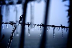 Καλυμμένο πάγος barb καλώδιο Στοκ φωτογραφία με δικαίωμα ελεύθερης χρήσης