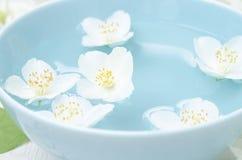 Κινηματογράφηση σε πρώτο πλάνο jasmine των λουλουδιών σε ένα κύπελλο για τη SPA Στοκ Εικόνα