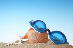 Κινηματογράφηση σε πρώτο πλάνο Swim των προστατευτικών διόπτρων με το θαλασσινό κοχύλι στοκ φωτογραφία με δικαίωμα ελεύθερης χρήσης