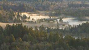 Κινηματογράφος χρονικού σφάλματος να κινήσει την ομίχλη κατά μήκος του στριμμένου αμμώδους ποταμού ένα στις αρχές χειμερινού πρωι απόθεμα βίντεο