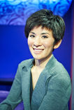 Κινηματογραφικός αστέρας TVB Στοκ εικόνες με δικαίωμα ελεύθερης χρήσης