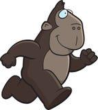 κινούμενα σχέδια πίθηκων Στοκ Εικόνες