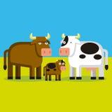 Κινούμενα σχέδια Bull, αγελάδα και Cald σε έναν τομέα Στοκ Εικόνα