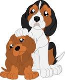 Κινούμενα σχέδια dachshund και λαγωνικό Στοκ Εικόνες