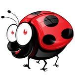 Κινούμενα σχέδια Ladybug που απομονώνονται Στοκ φωτογραφία με δικαίωμα ελεύθερης χρήσης