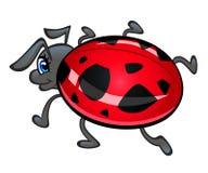 Κινούμενα σχέδια ladybug Στοκ Φωτογραφίες