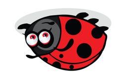 Κινούμενα σχέδια Ladybug Στοκ φωτογραφία με δικαίωμα ελεύθερης χρήσης