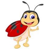 Κινούμενα σχέδια ladybugs που θέτουν ελεύθερη απεικόνιση δικαιώματος