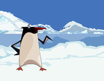 Κινούμενα σχέδια penguin στα χιονώδεις βουνά και τον πάγο Στοκ Φωτογραφίες