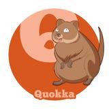 Κινούμενα σχέδια Quokka ABC Στοκ Φωτογραφίες