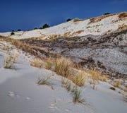Κινούμενοι αμμόλοφοι Wydma Czołpińska στοκ φωτογραφίες