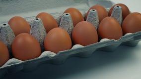 Κινούμενος πυροβολισμός κιβωτίων αυγών φιλμ μικρού μήκους