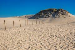 Κινούμενο πάρκο αμμόλοφων κοντά στη θάλασσα της Βαλτικής σε Leba, Πολωνία Στοκ Φωτογραφία