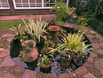 Κιρκίρι μηδενικά κήπος στοκ εικόνες