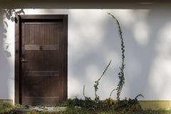 κισσός πορτών στοκ φωτογραφία με δικαίωμα ελεύθερης χρήσης