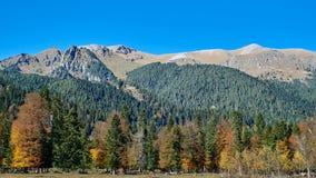 Κιτρινοπράσινο δάσος φθινοπώρου στο υπόβαθρο μιας σειράς και ενός μπλε ουρανού βουνών στοκ φωτογραφία με δικαίωμα ελεύθερης χρήσης