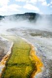 Κιτρινοπράσινο ρεύμα Στοκ Εικόνες