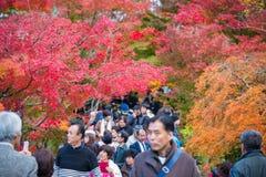 Κιότο, Ιαπωνία - 17 Νοεμβρίου 2017: Οι τουρίστες επισκέπτονται το ναό Eikando Στοκ Εικόνα