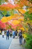 Κιότο, Ιαπωνία - 17 Νοεμβρίου 2017: Οι τουρίστες επισκέπτονται το ναό Eikando Στοκ φωτογραφία με δικαίωμα ελεύθερης χρήσης