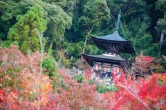 Κιότο, Ιαπωνία - 17 Νοεμβρίου 2017: Παγόδα Tahoto στη βουνοπλαγιά Στοκ Φωτογραφίες